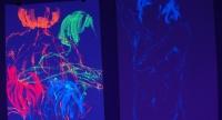 1182_dn-lichtwelten-bildmotiv01.jpg
