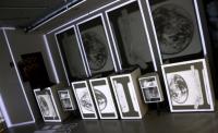 Videomapping, Videoinstallation @ Zeilgalerie