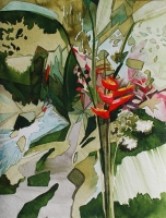Heliconia 2012, Ink/Paper, 32x24cm -