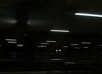 natural digitalism 1 / night -