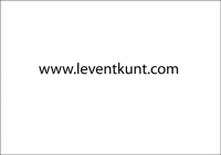 1691_wwwleventkuntcom.jpg