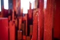 """""""The City, it turned Red!"""" Bild 3/19 - (Foto Niko Neuwirth)"""